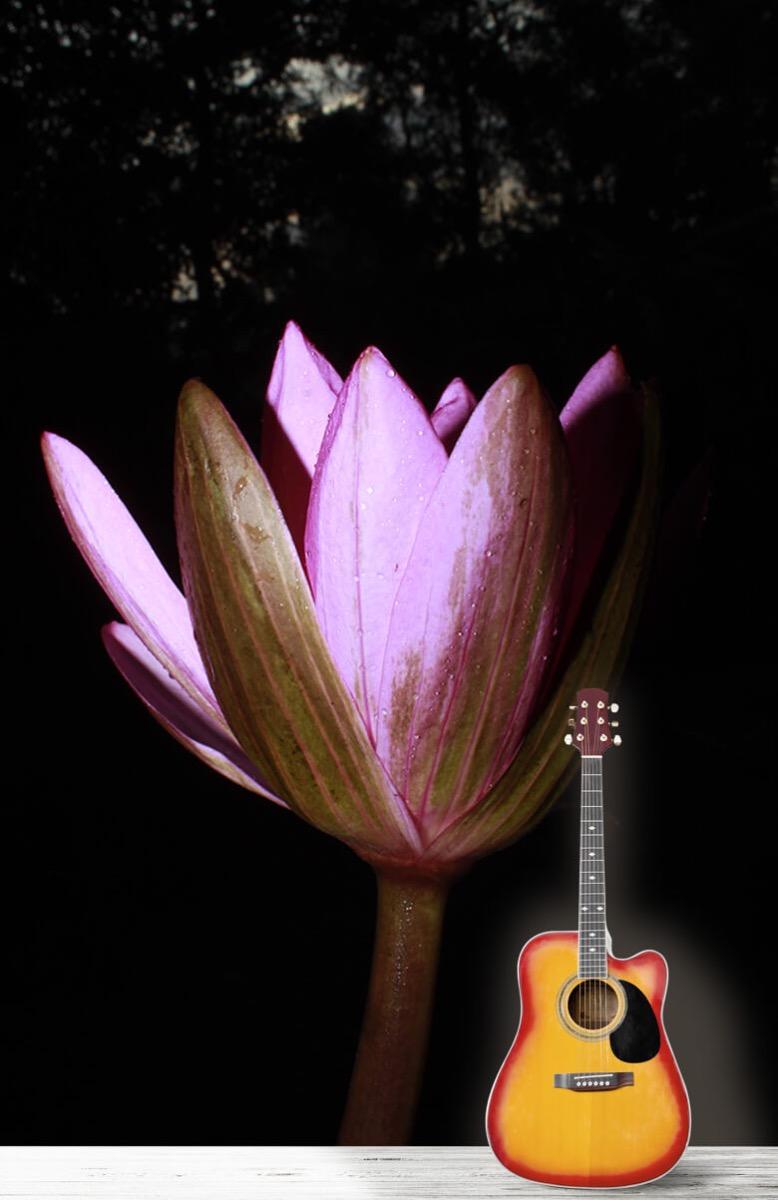 Bloemen, planten en bomen Zijkant lotusbloem 11