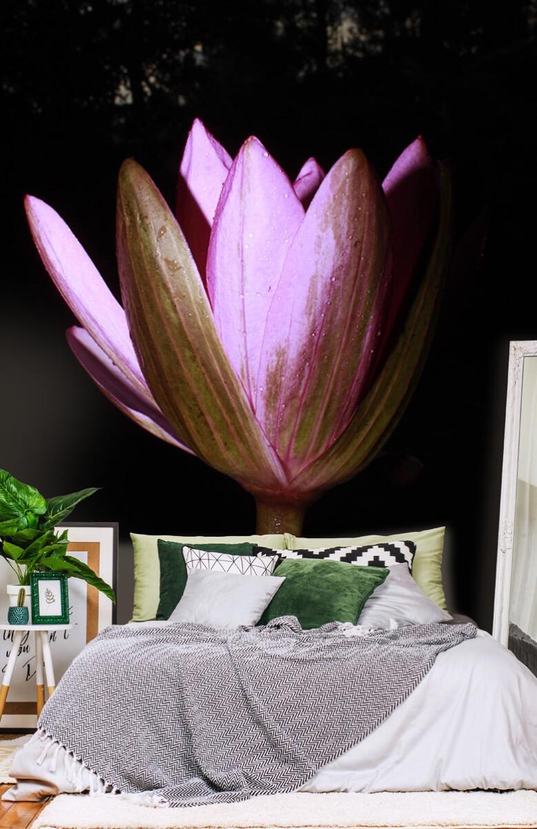 Bloemen, planten en bomen Zijkant lotusbloem 13