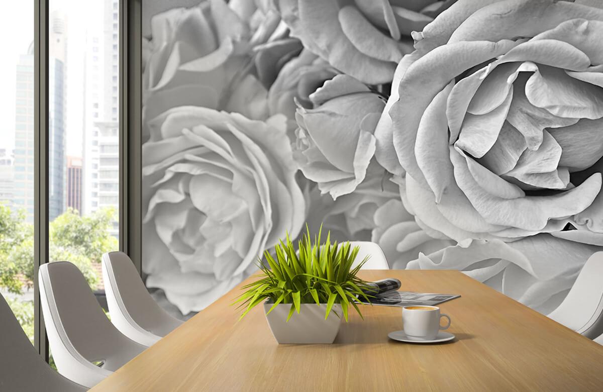 Bloemen, planten en bomen Rozen zwart-wit 3