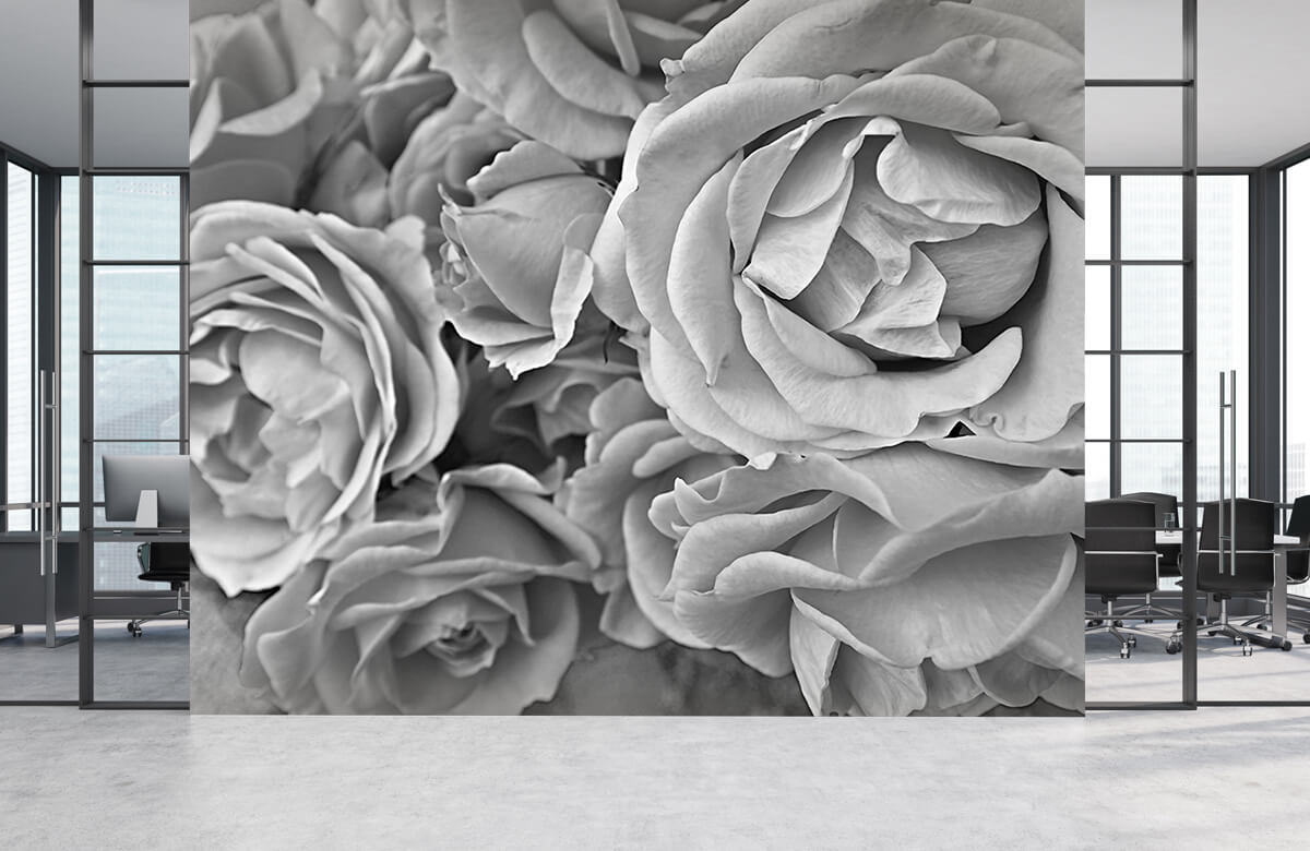 Bloemen, planten en bomen Rozen zwart-wit 4