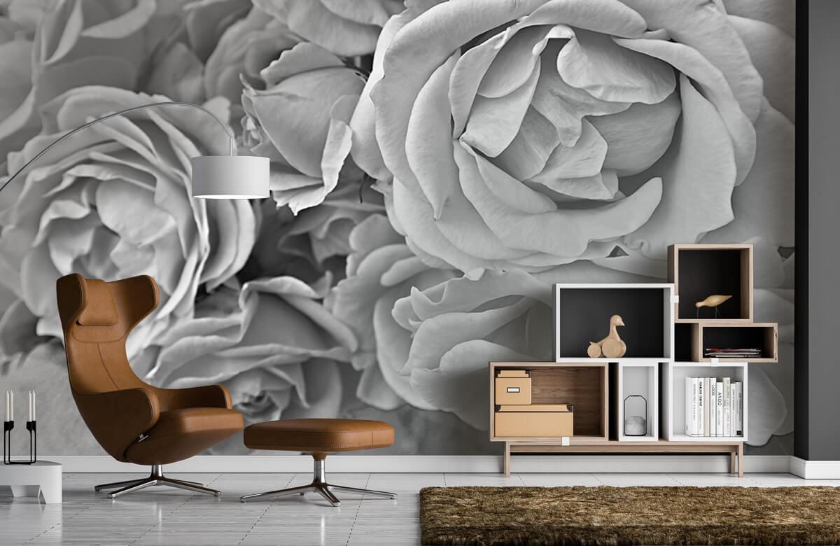 Bloemen, planten en bomen Rozen zwart-wit 5