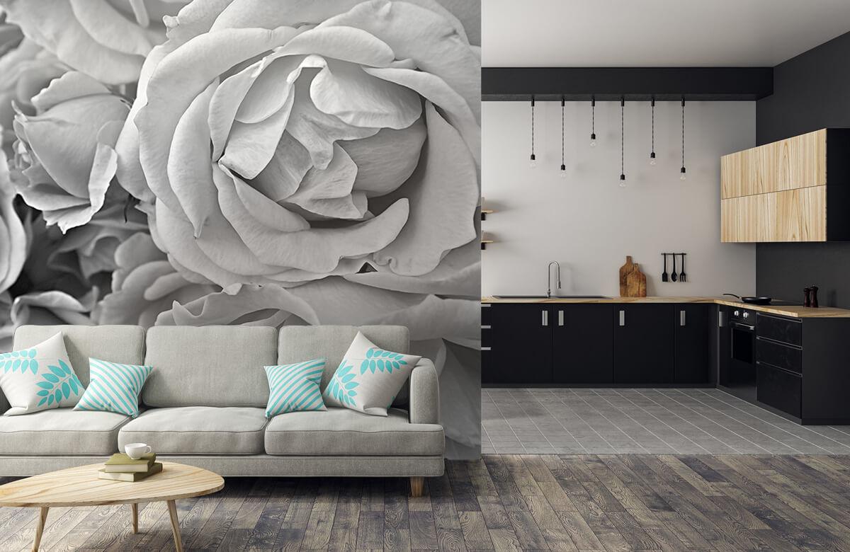 Bloemen, planten en bomen Rozen zwart-wit 6