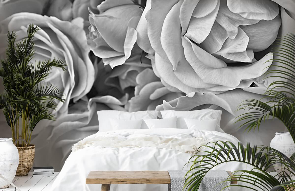 Bloemen, planten en bomen Rozen zwart-wit 7