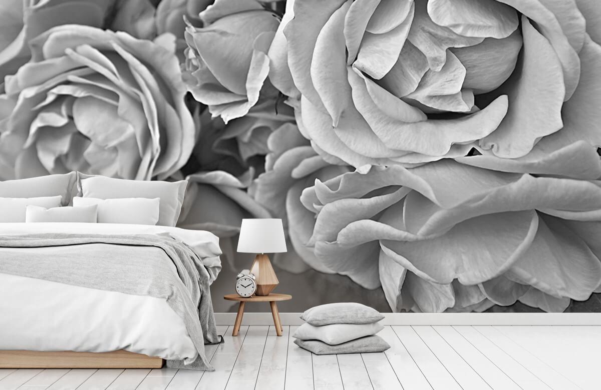 Bloemen, planten en bomen Rozen zwart-wit 1