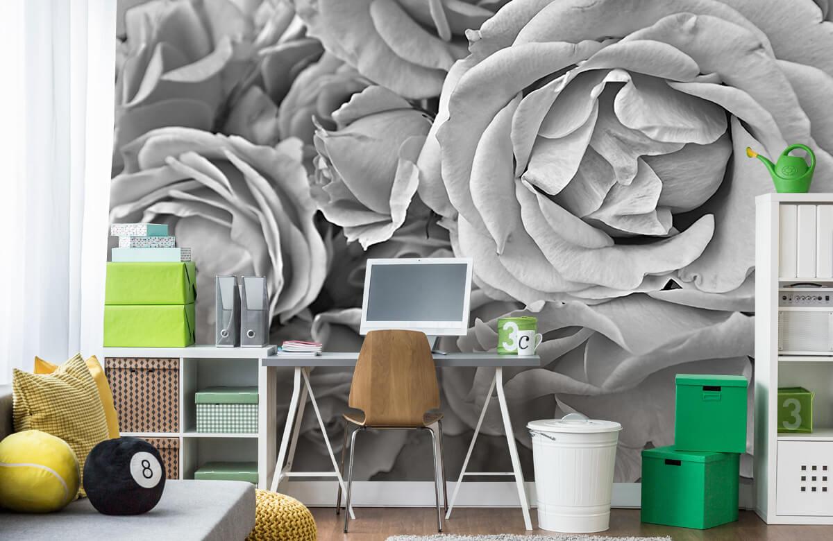 Bloemen, planten en bomen Rozen zwart-wit 9