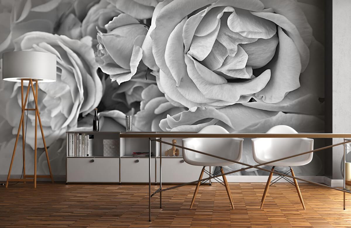 Bloemen, planten en bomen Rozen zwart-wit 11