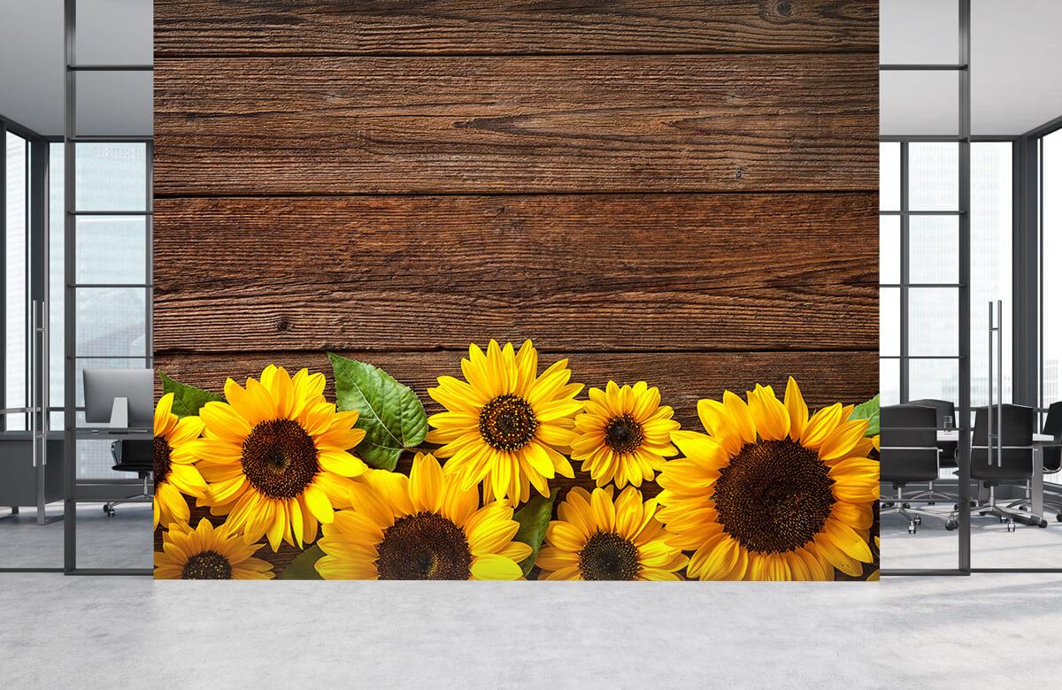 Bloemen, planten en bomen Zonnebloemen op hout 4