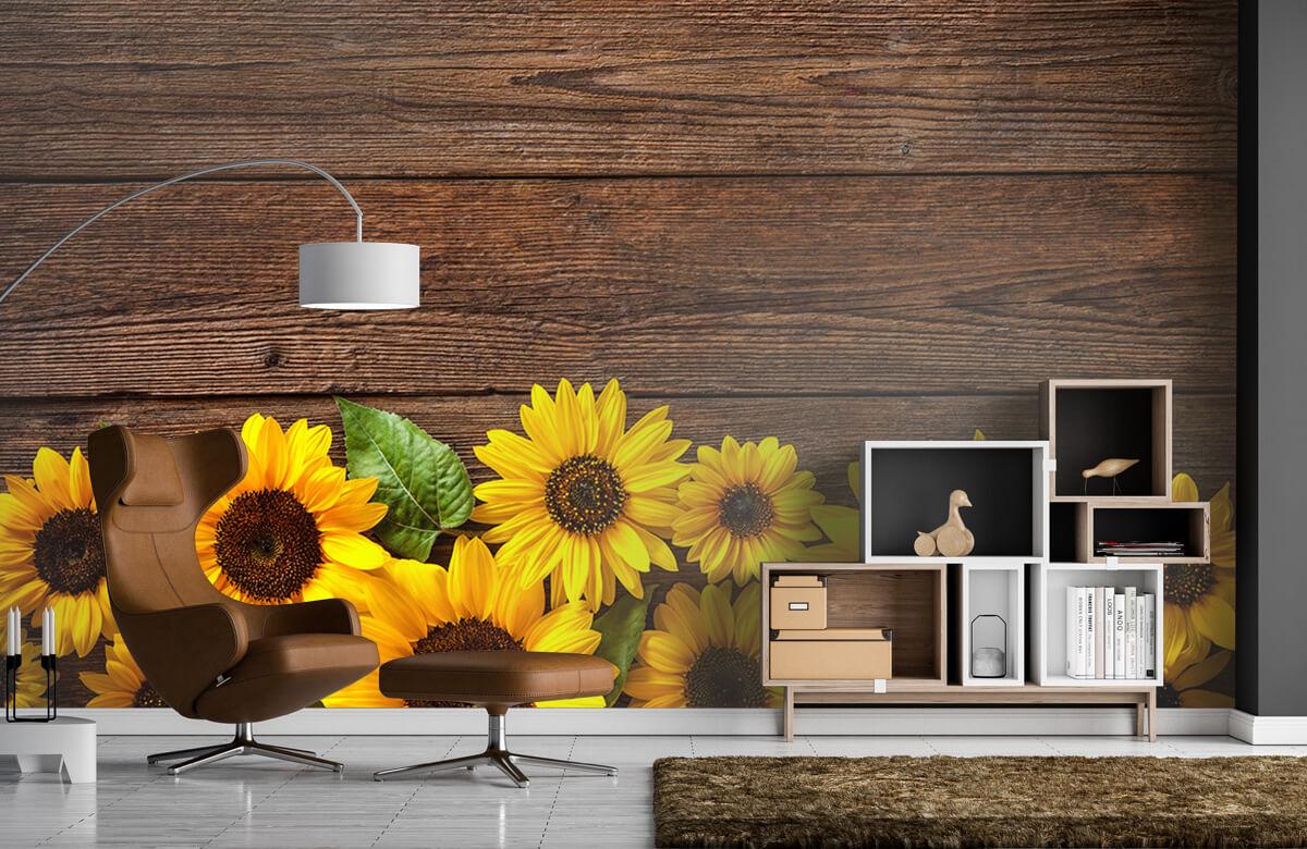 Bloemen, planten en bomen Zonnebloemen op hout 5