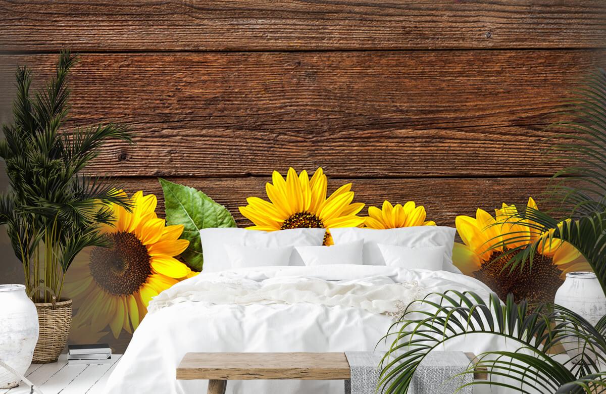 Bloemen, planten en bomen Zonnebloemen op hout 6