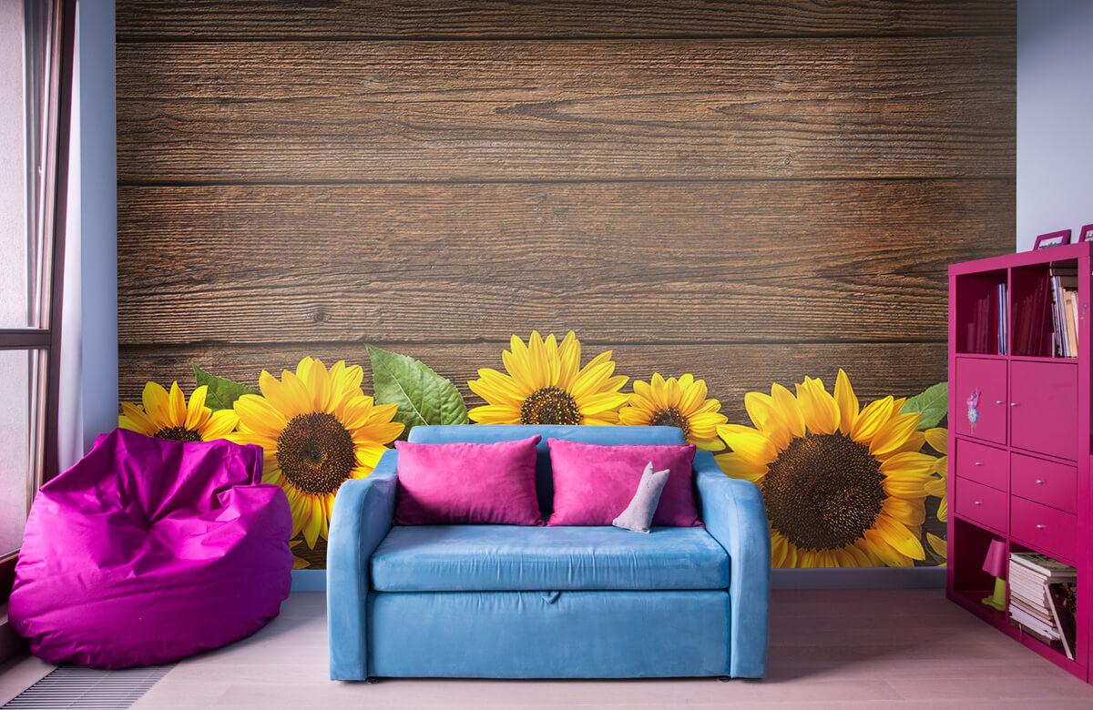 Bloemen, planten en bomen Zonnebloemen op hout 10