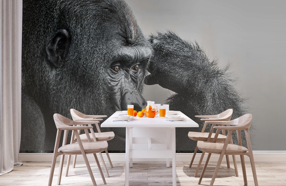 Dieren Gorilla zwart-wit 2