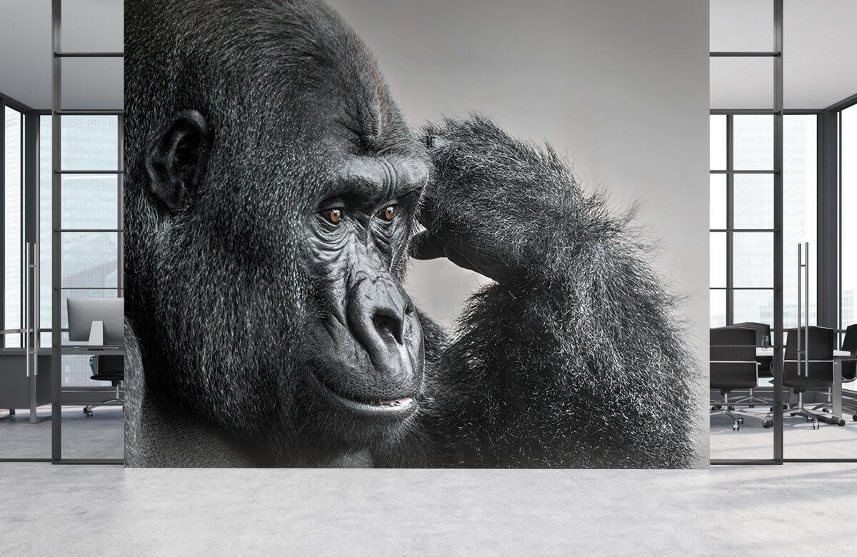 Dieren Gorilla zwart-wit 4