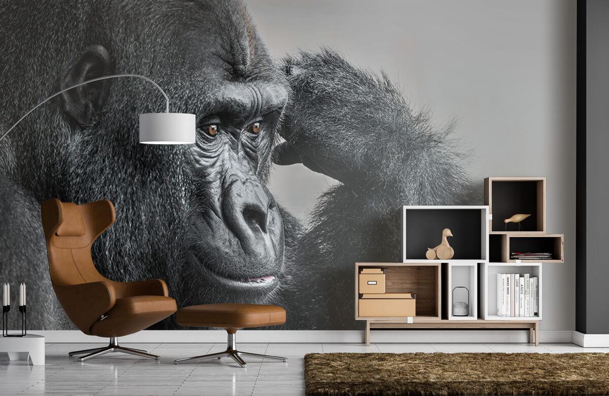 Dieren Gorilla zwart-wit 5