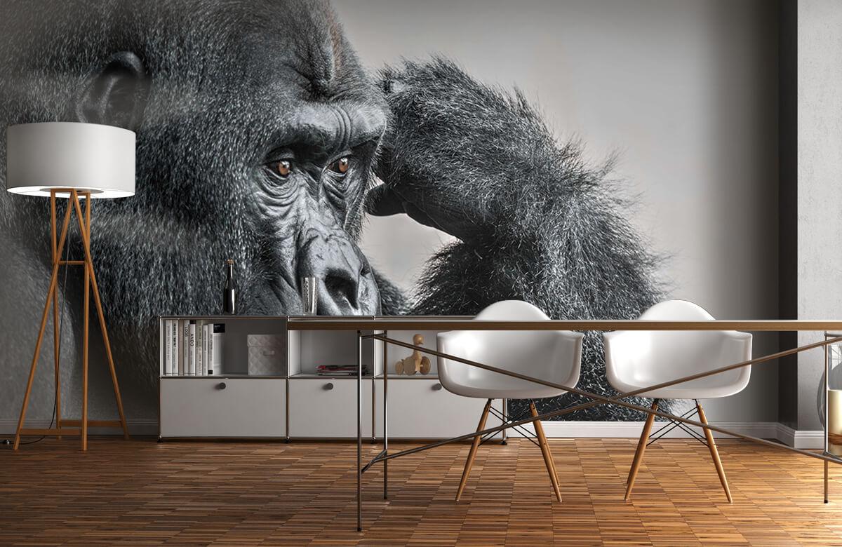 Dieren Gorilla zwart-wit 11