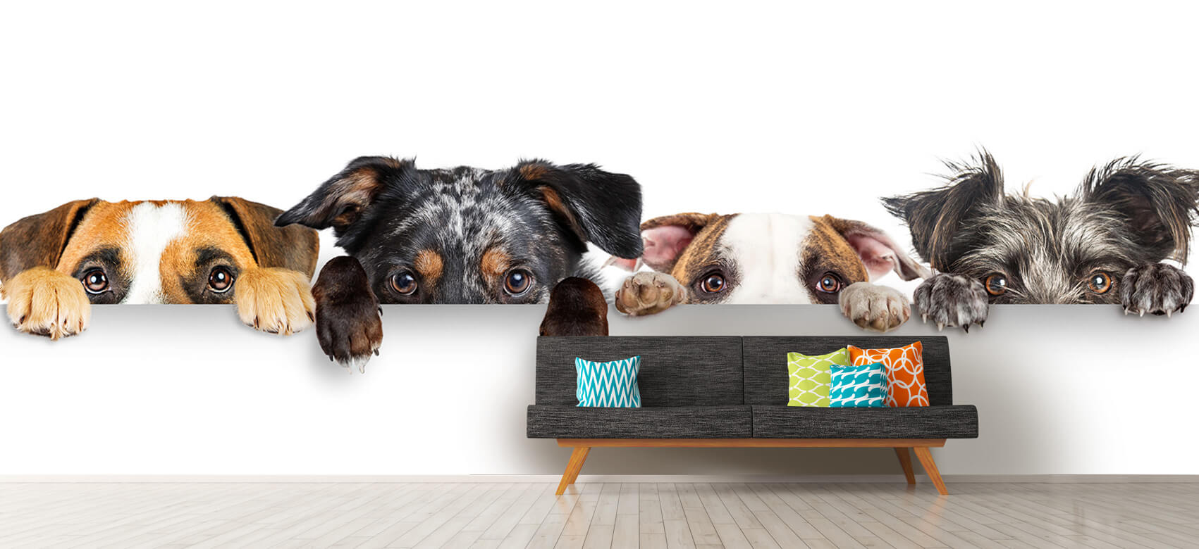 Dieren Glurende honden 12