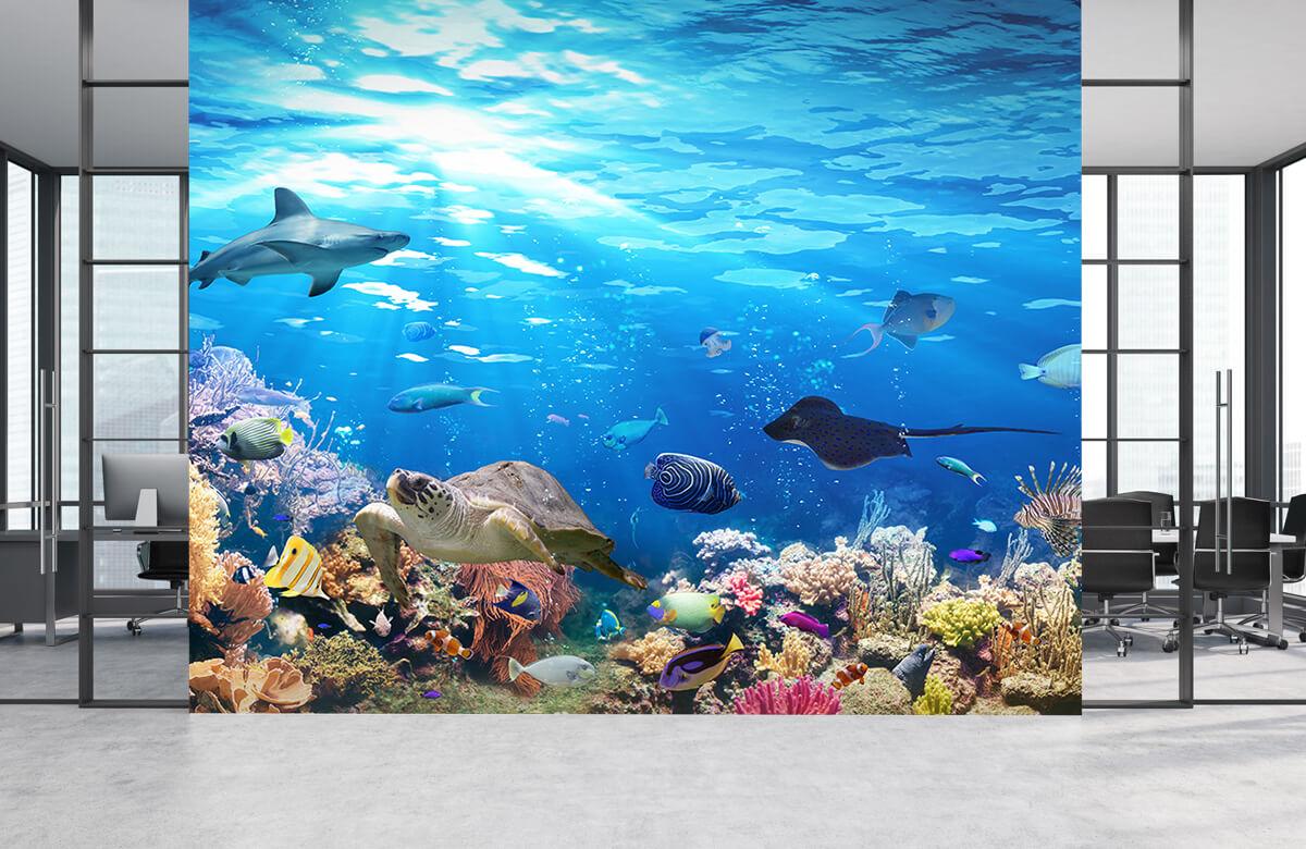 Dieren Exotische vissen 4
