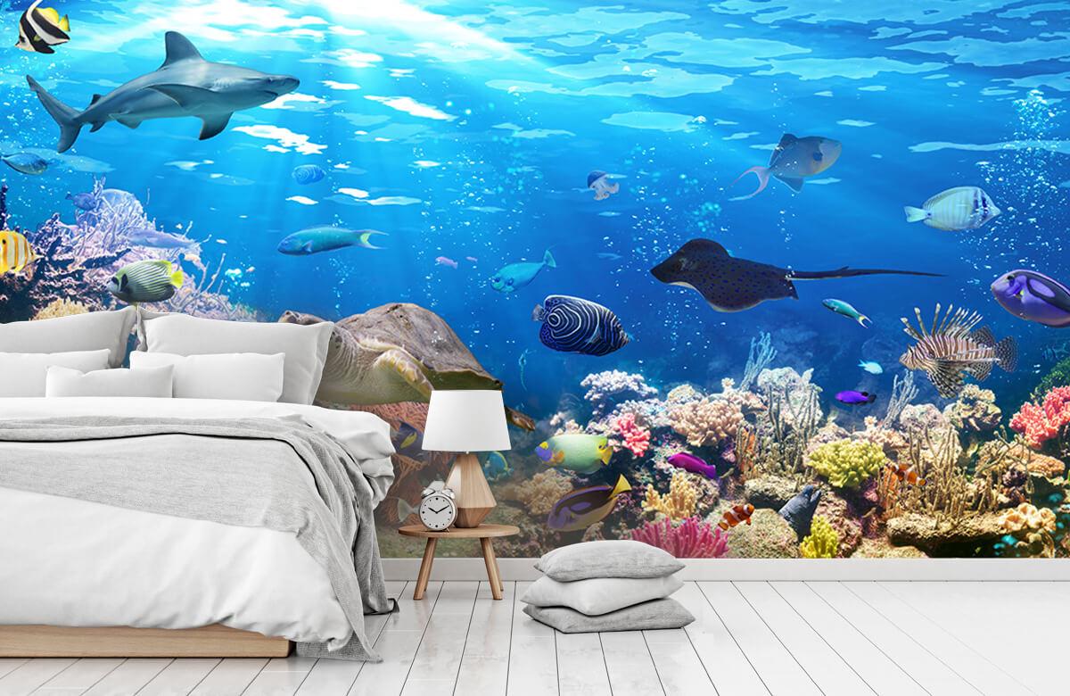 Dieren Exotische vissen 7