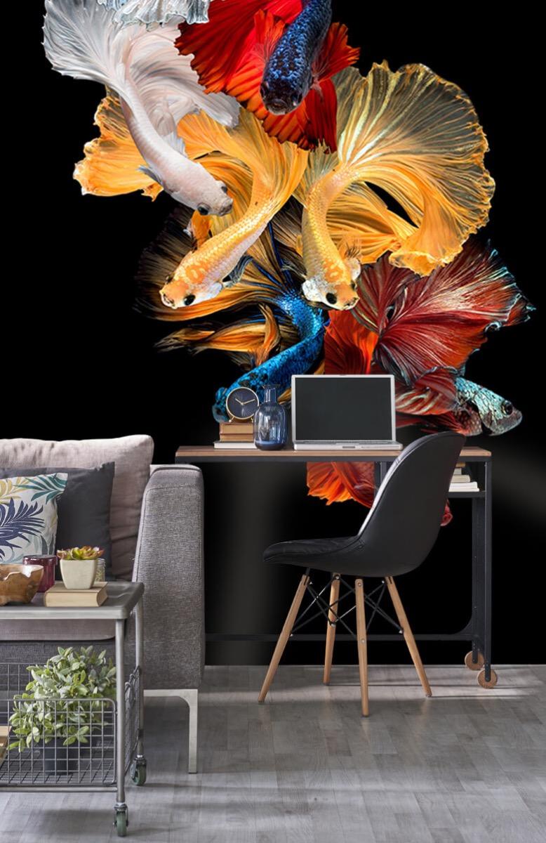 Dieren Vissen compositie 9