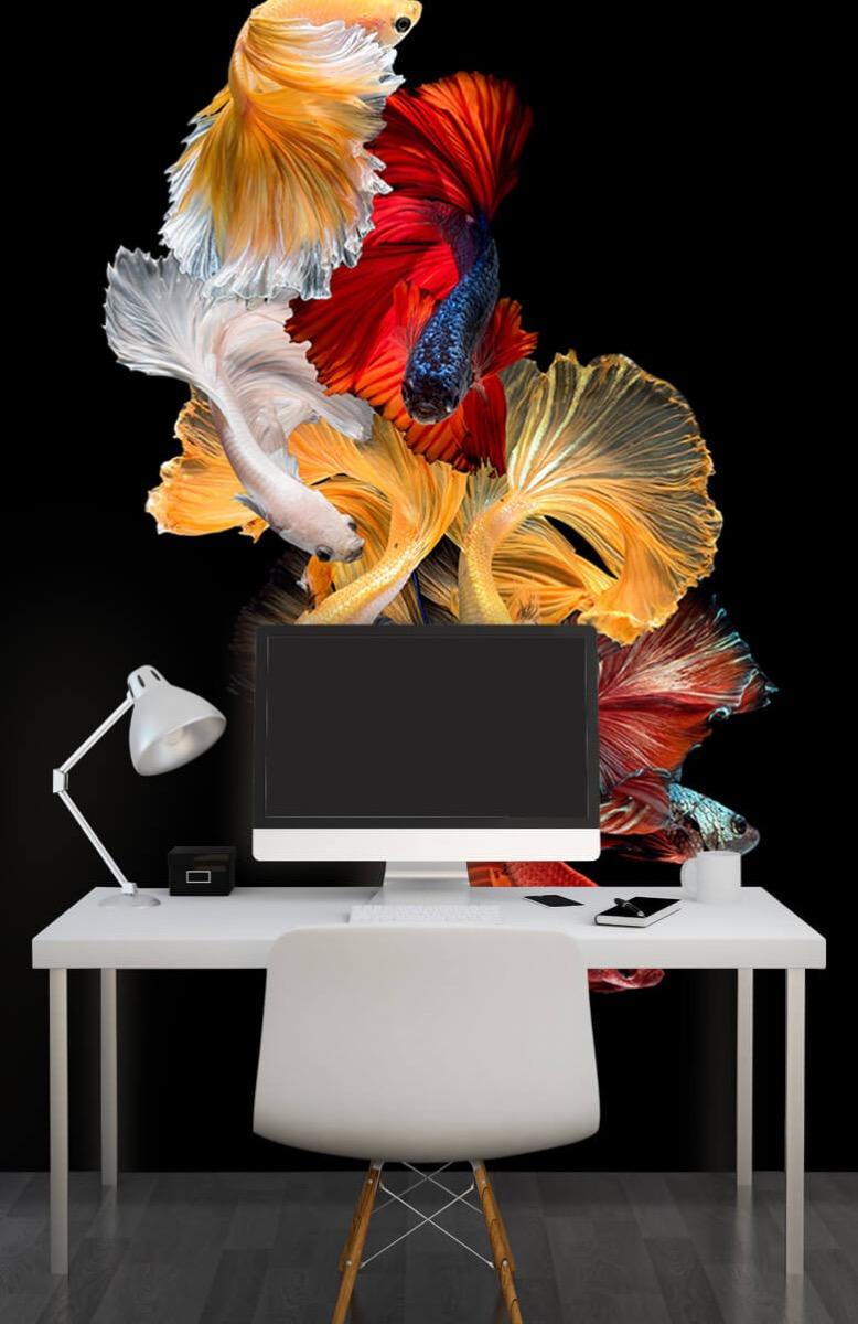 Dieren Vissen compositie 10