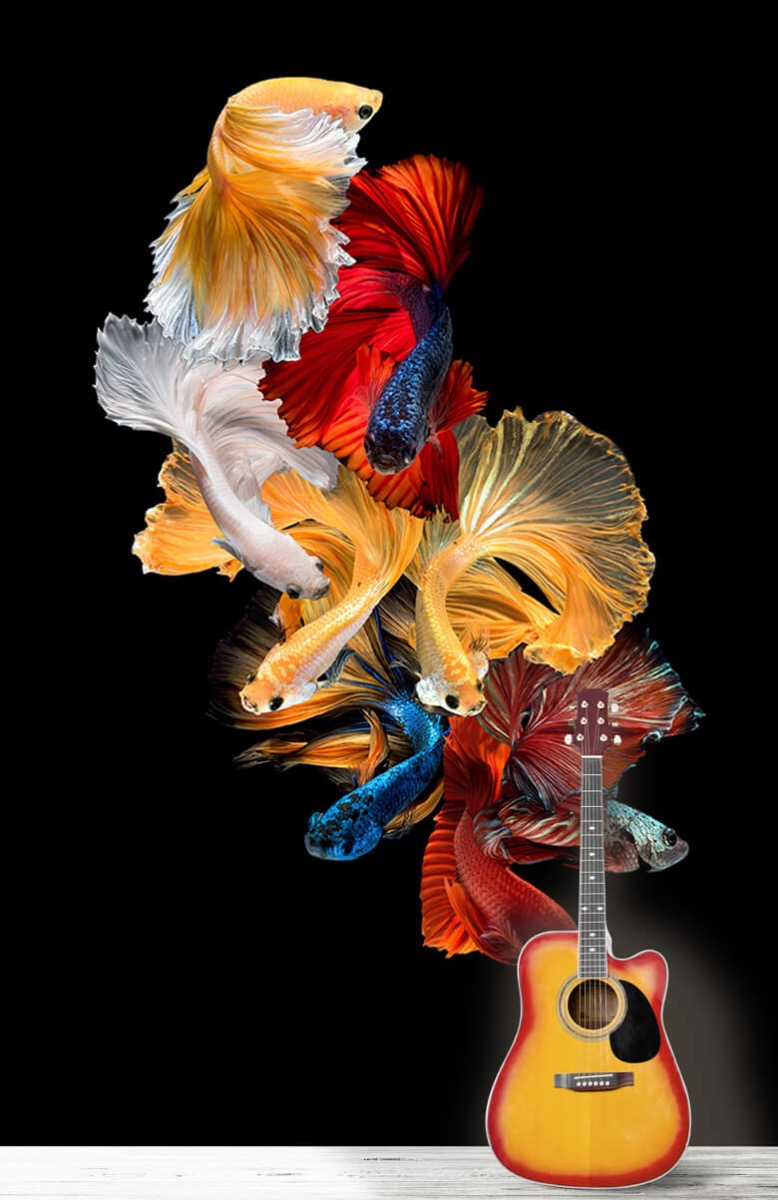 Dieren Vissen compositie 11