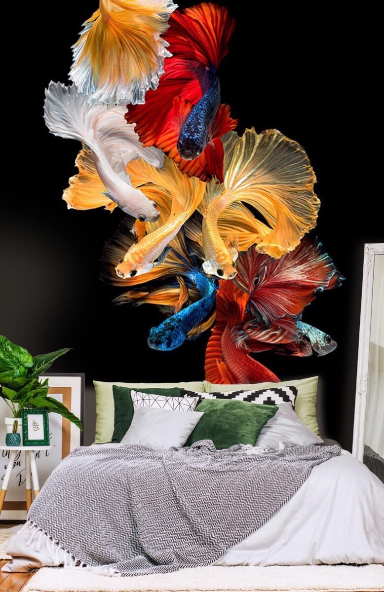 Dieren Vissen compositie 13