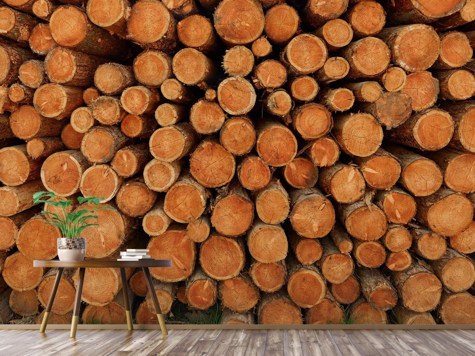 Bomen - Stapel donkere boomstammen - Slaapkamer 4