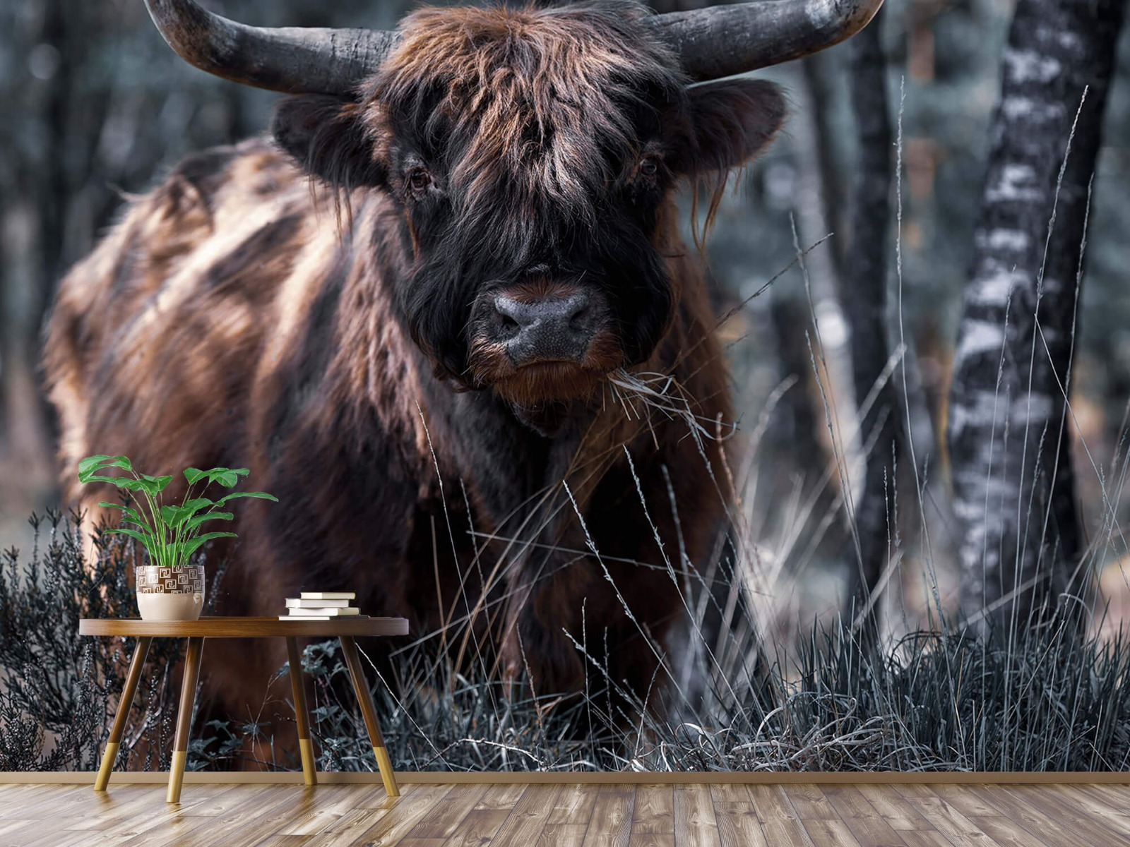 Hooglanders - Schotse hooglander - Woonkamer 4