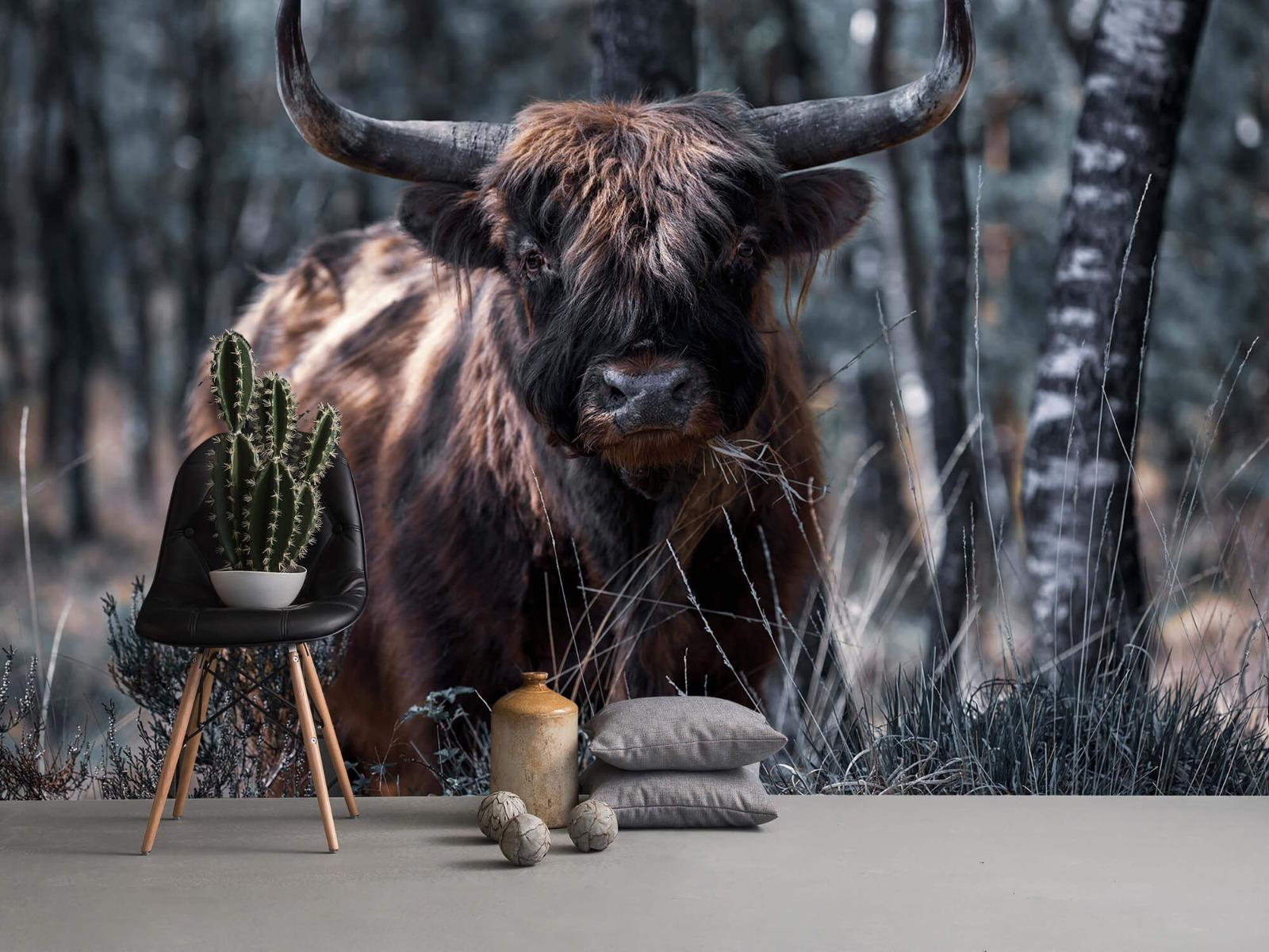 Hooglanders - Schotse hooglander - Woonkamer 13