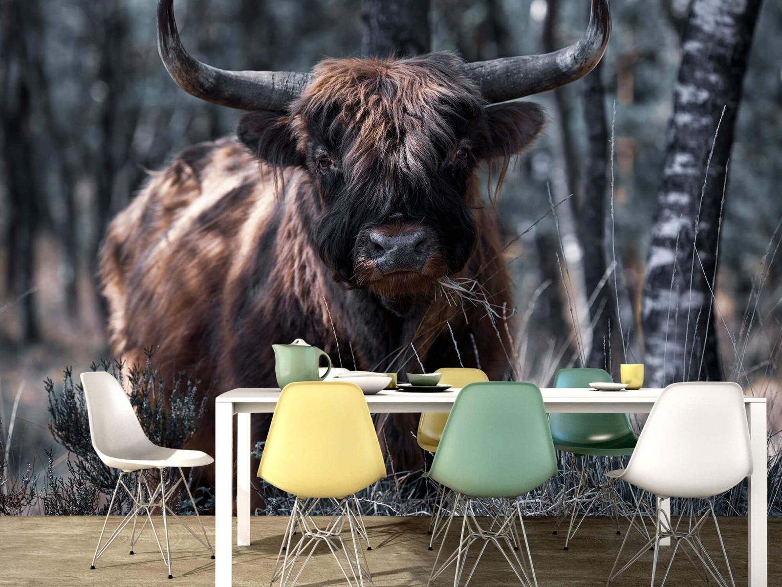 Hooglanders - Schotse hooglander - Woonkamer 15