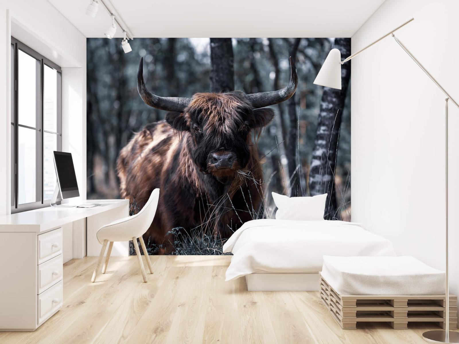 Hooglanders - Schotse hooglander - Woonkamer 22