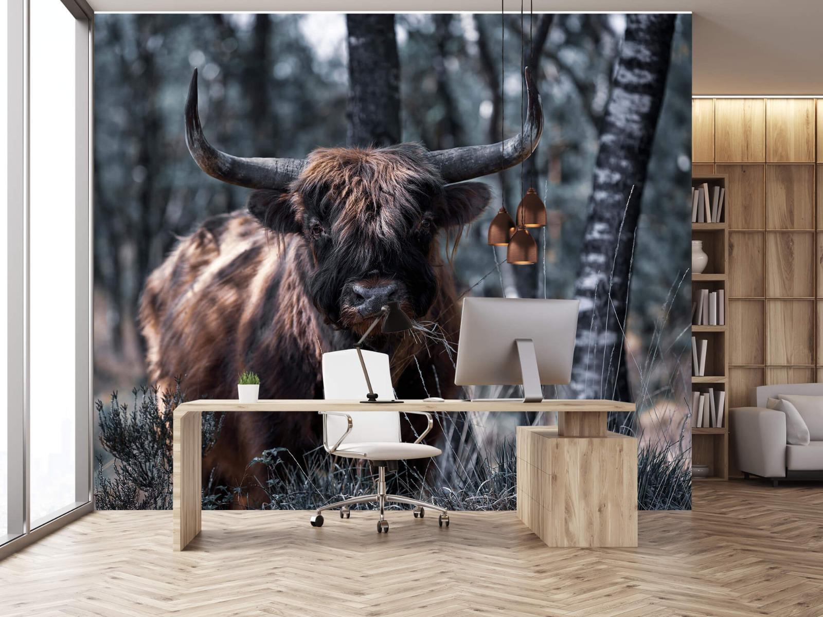 Hooglanders - Schotse hooglander - Woonkamer 24