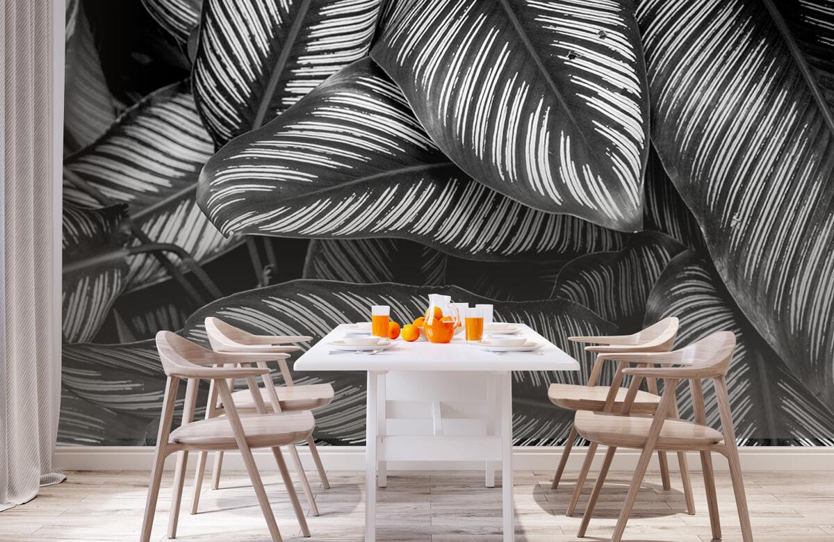 Jungle Zwart-wit palmbladeren 2