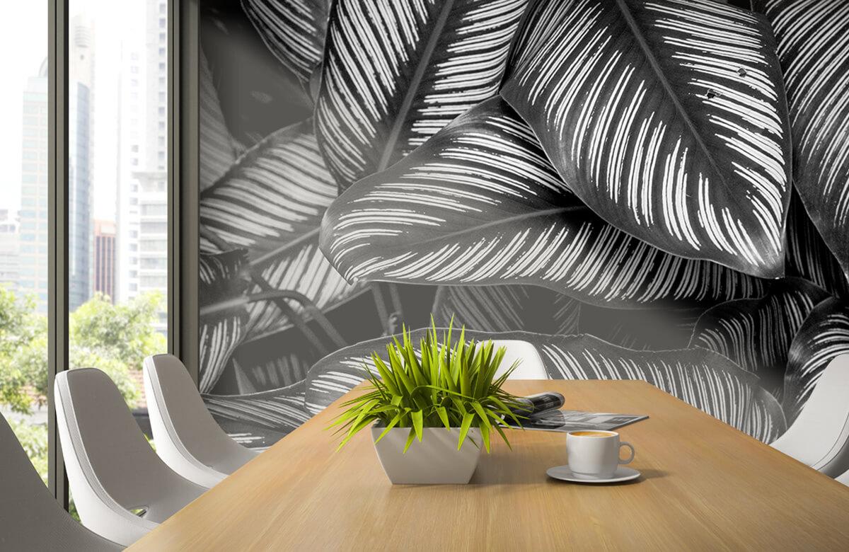 Jungle Zwart-wit palmbladeren 3