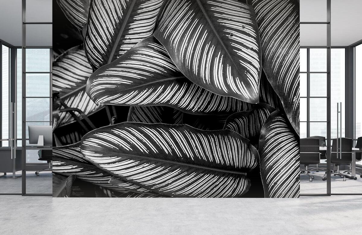 Jungle Zwart-wit palmbladeren 4