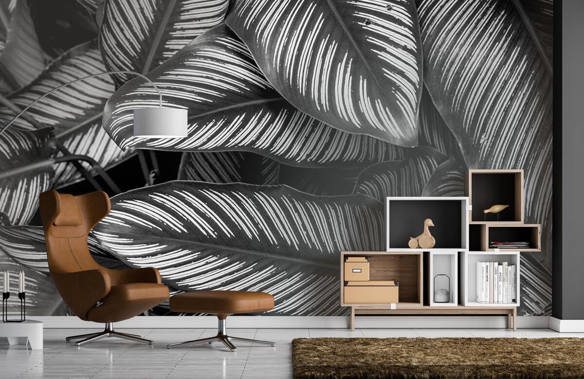 Jungle Zwart-wit palmbladeren 1