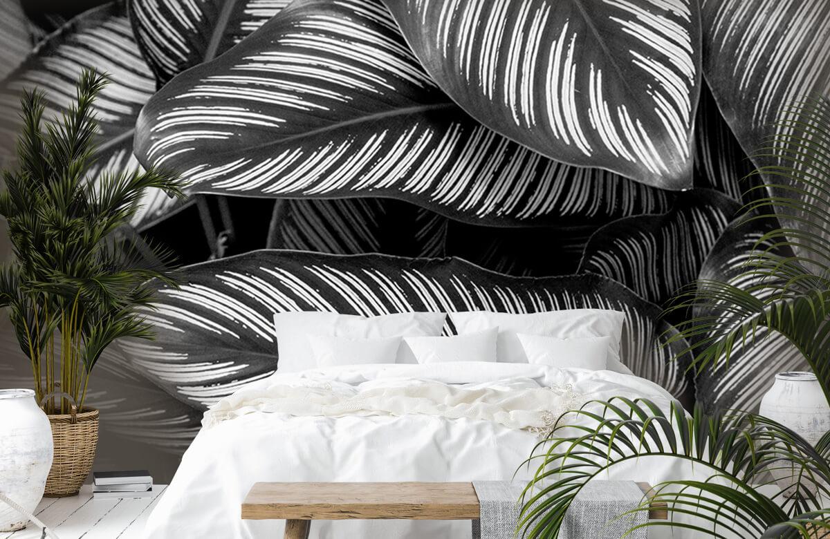 Jungle Zwart-wit palmbladeren 6