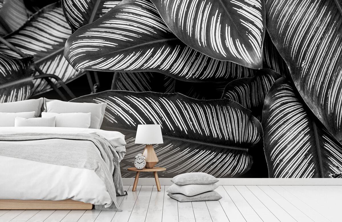 Jungle Zwart-wit palmbladeren 7