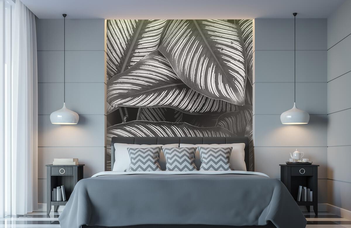 Jungle Zwart-wit palmbladeren 8