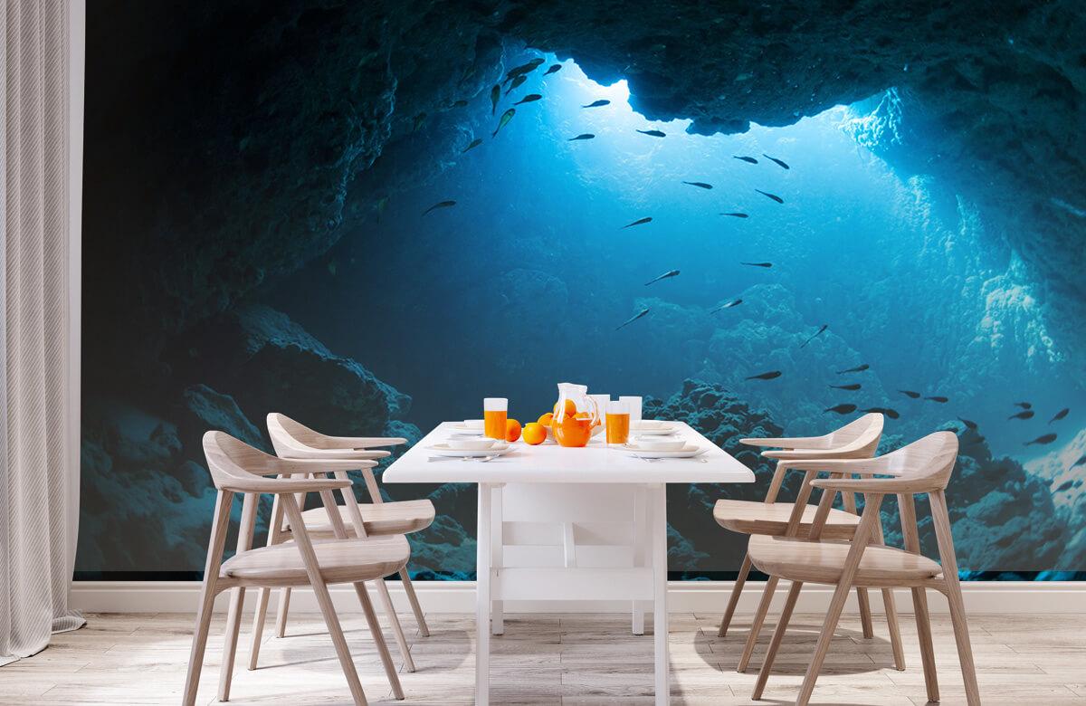 Natuur Onderwater grot met vissen 1