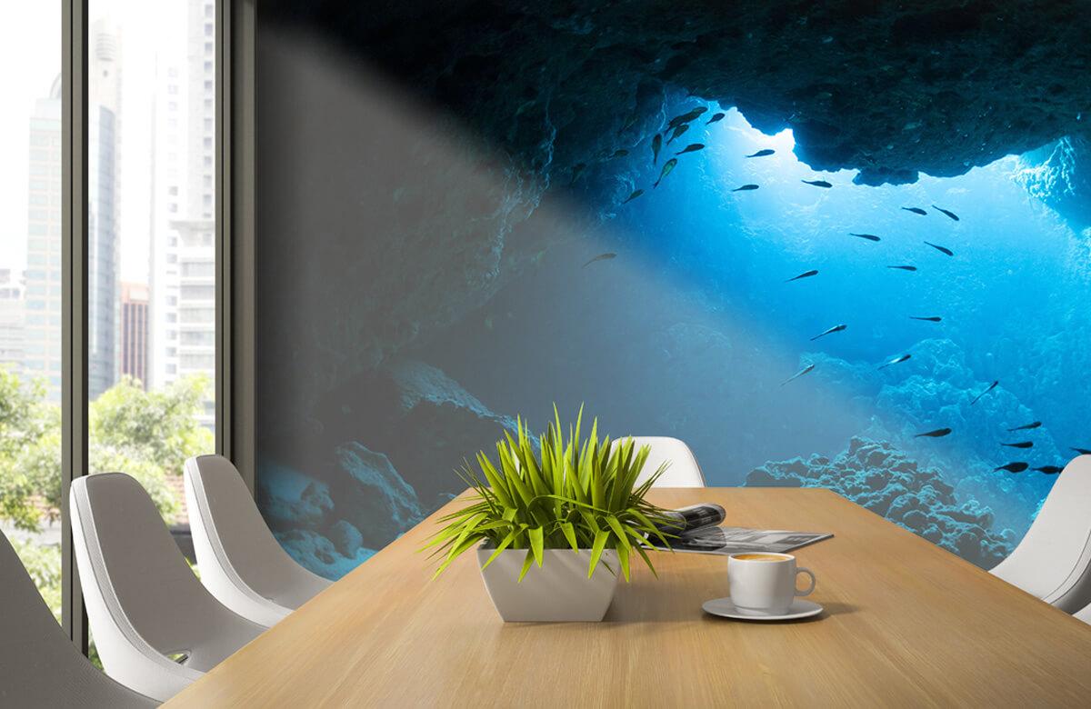 Natuur Onderwater grot met vissen 2