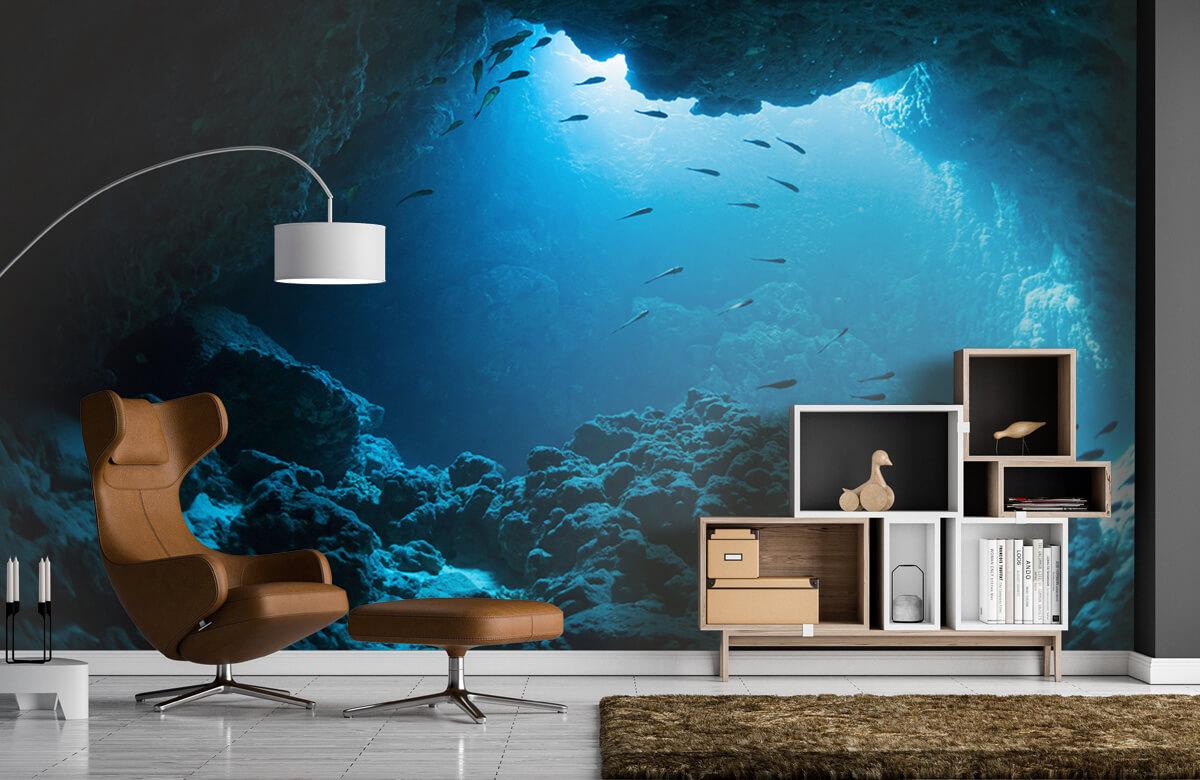 Natuur Onderwater grot met vissen 4