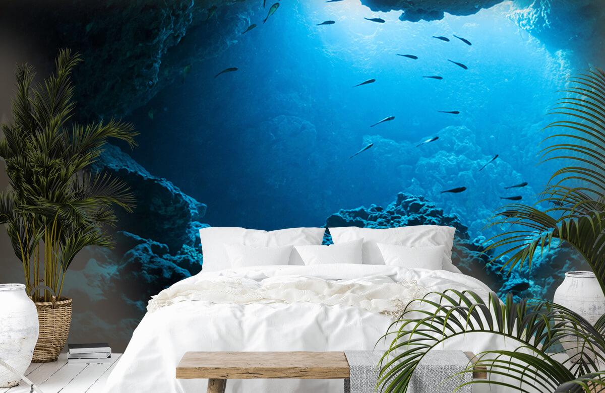 Natuur Onderwater grot met vissen 6