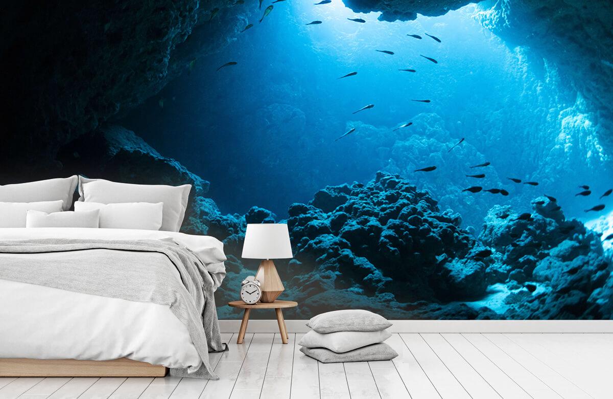 Natuur Onderwater grot met vissen 7