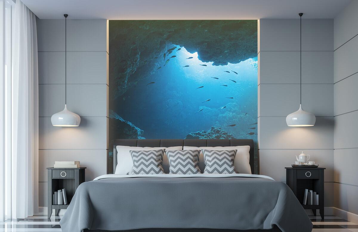Natuur Onderwater grot met vissen 8