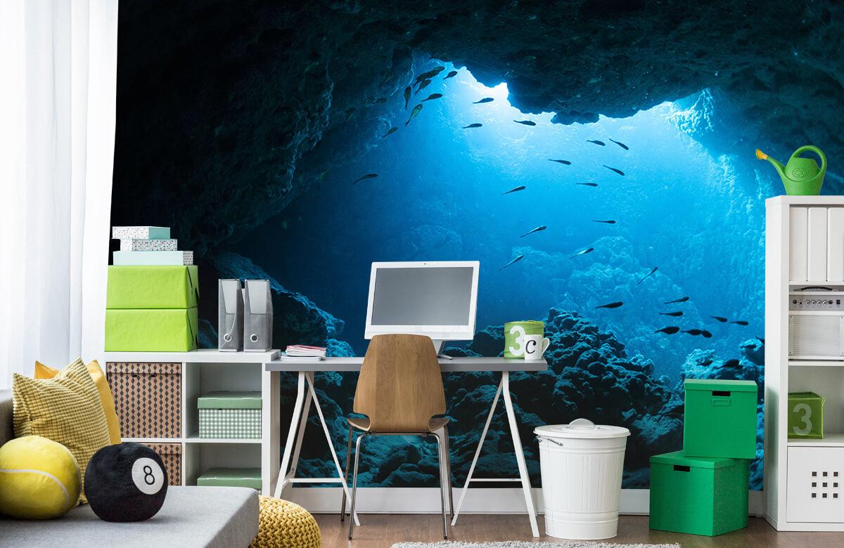 Natuur Onderwater grot met vissen 9