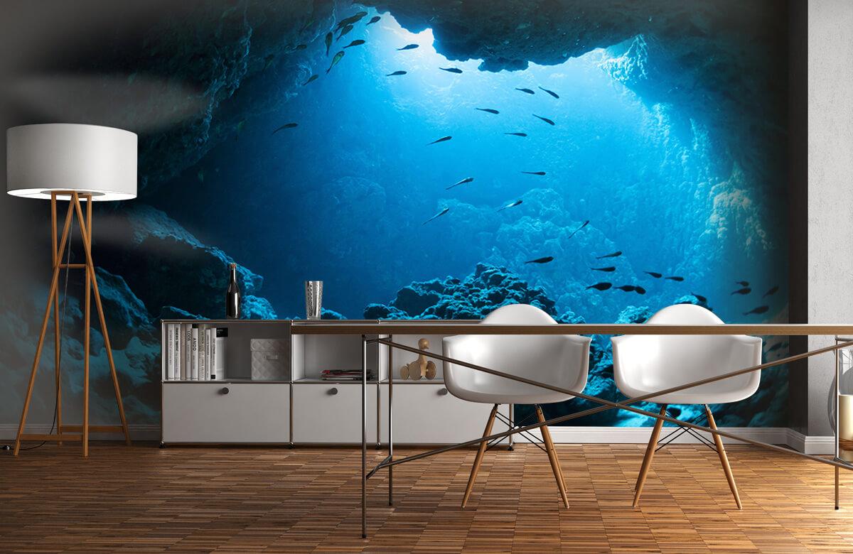 Natuur Onderwater grot met vissen 11