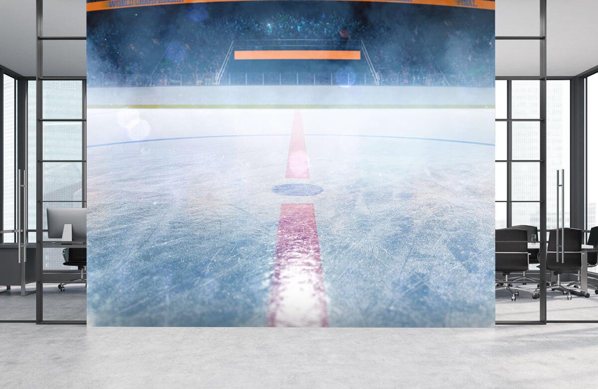 Sport IJshockey veld 3