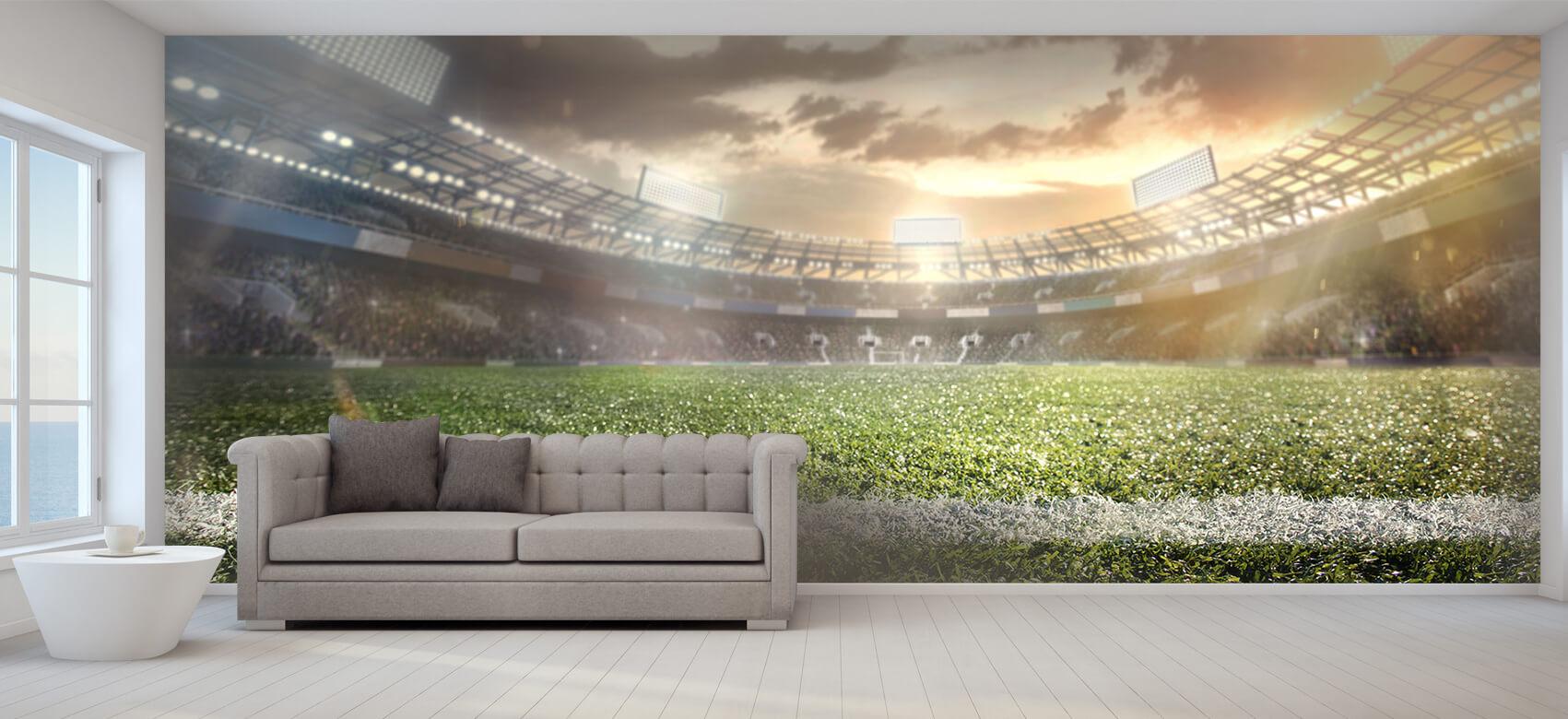 Sport Stadion met kunstgras 8