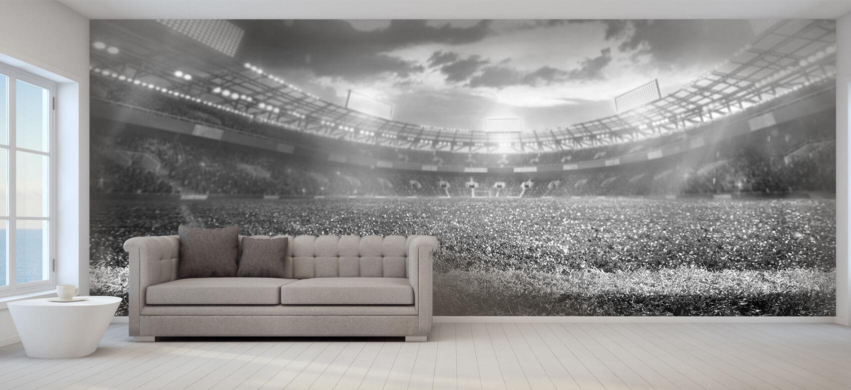 Sport Stadion met kunstgras 9