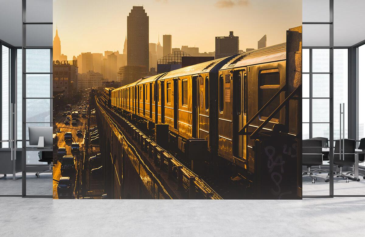 Transport Trein in New York 4